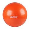 Фитбол-мяч 55 см